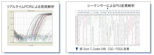 遺伝子検査技術について